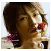 Rose from Kame (KAT-TUN)