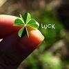 A Little Good Luck