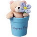 teddy in a bucket