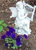 Garden Muse and Purple Petunias!