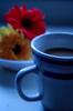 ♥ Coffee & Flowers ♥