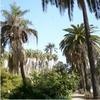 sunny day in Spain
