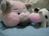 pig + cow = US!!