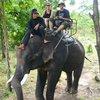 an elephant trek